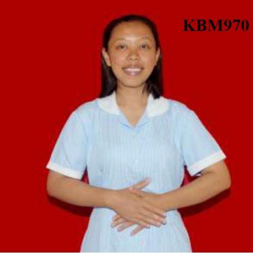 KBM970