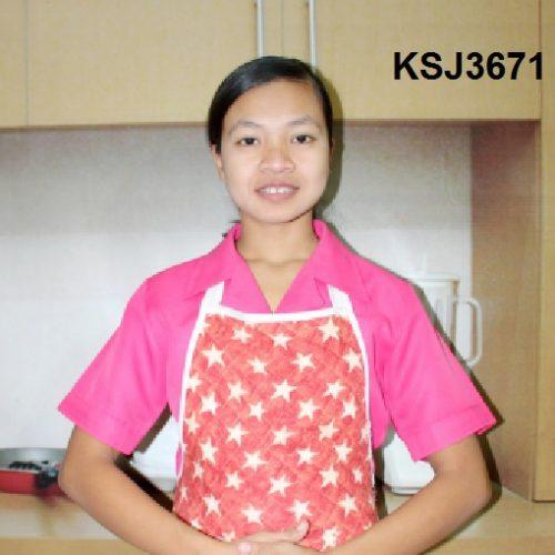 KSJ3671